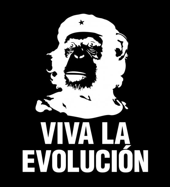 Che Guevara shirt Viva La Evolucion