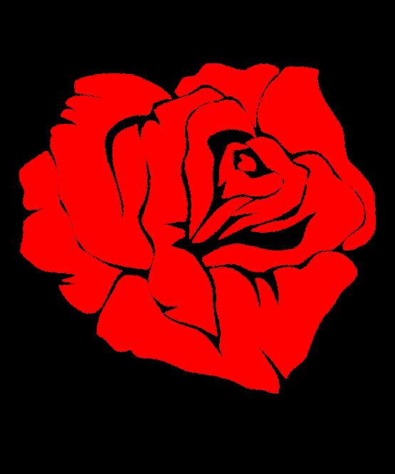 Roos Bloem 2