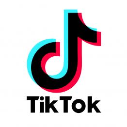 TikTok Logo 3